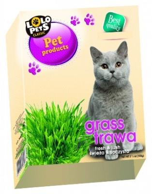 """Трева за котки """"Lolo pets"""" 100 грама"""