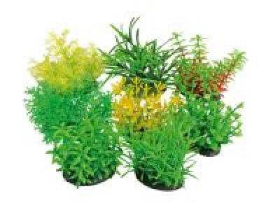 """Изк. Растение """"Tropical"""" 7 см"""