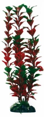 Изк.растение Ludwigia 18 см